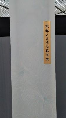 KIMG0500 - コピー
